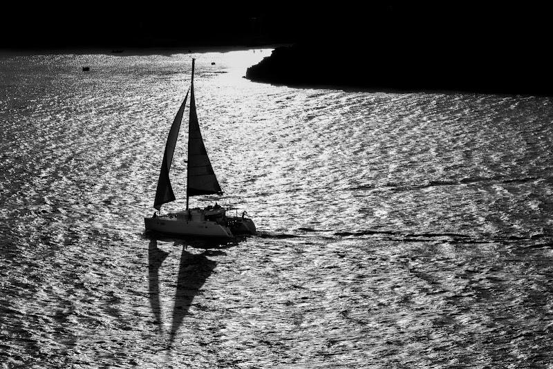 Con il vento sempre in poppa di Pelagus