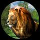 Animal Shooting: Sniper Hunting Safari Survival 3D for PC-Windows 7,8,10 and Mac