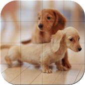 Tile Puzzle - Baby Animals