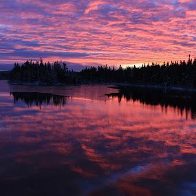 Morning at Hazelwood by Tammy Drombolis - Landscapes Sunsets & Sunrises (  )