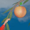 Meyve Toplama (3D) - Çocuklar İçin icon
