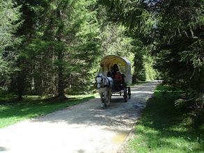 Photo: Un séjour en roulotte / Ein Planwagen-Ausflug