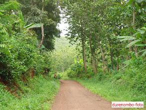 Photo: Salah satu jalan desa yang menghubungkan Dk. Gepret dengan Dk. Durenombo