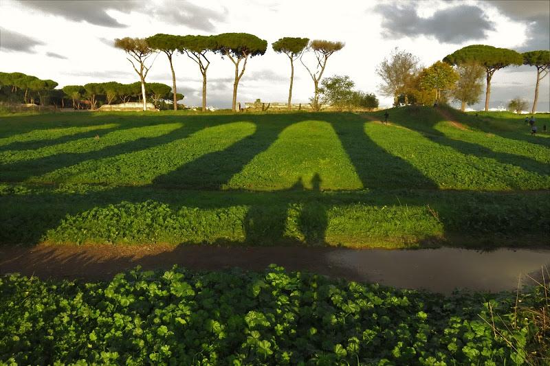 Acquedotto romano riflesso nel verde di sarasun