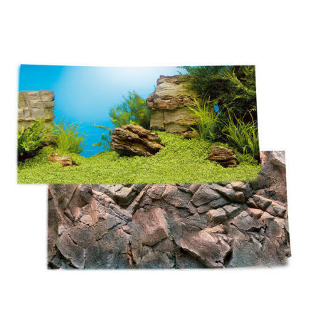 Bakgrund Poster 1 S Plant/reef  60x30 dubbelsidig
