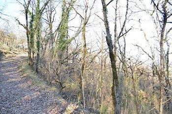 terrain à Castelfranc (46)