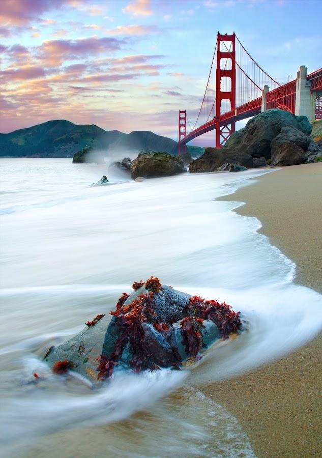 San Francisco, CA. by Dustin Penman - Travel Locations Landmarks ( sand red, sewed, dustin, california, coast low tide, rocks sunset, bridge, golden gate, penman, san francisco )