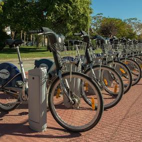 Universidad Politécnica. Valencia by Luis Felipe Moreno Vázquez - Transportation Bicycles ( bicycles, university, valencia, spain )