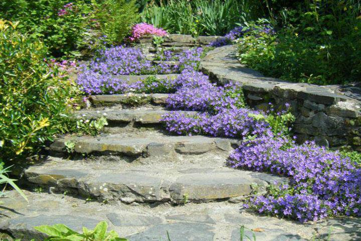 Những bậc thang với hoa nhỏ vừa lãng mạn vừa có tính thẩm mỹ