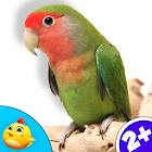 Real Bird Sounds v1.0.0