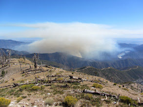 Photo: Williams Fire 2012 about 50 minutes after it stated