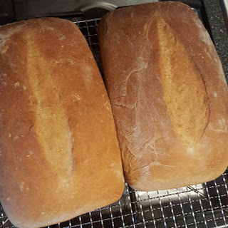 Whole Wheat Everyday Bread
