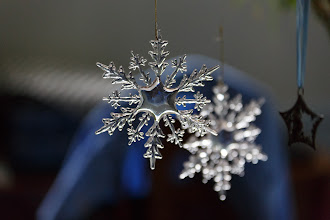 Photo: Reasonable bokeh at 137mm, 1/320 sec, F2.8, ISO 5000. All tests on Canon 5D Mark III.