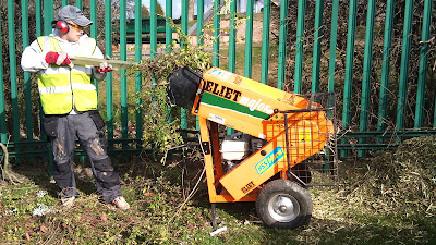Hedge Cutting Shaping And Removal Twiggs Landscaping Maintenance And Environmental Specialists
