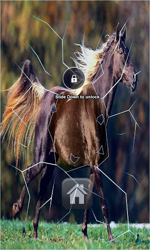 Runing Horse Live Wallpaper