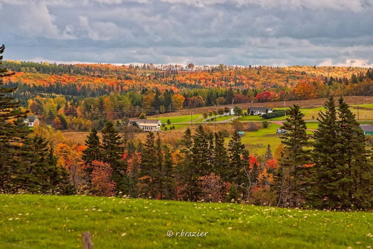 Prince Edward Island in fall, accessible chiefly by luxury or expedition cruise ships.