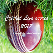 Cricket Live Scores Update