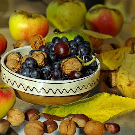 Autumn still colors by Ciprian Apetrei - Artistic Objects Still Life ( fruits, nature up close, autumn, brittany, colors )
