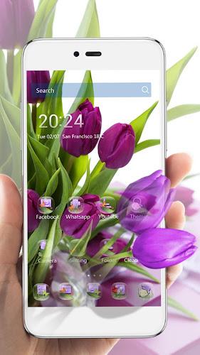 HD Purple Tulip Wallpaper Android App Screenshot