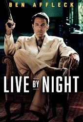 A Lei da Noite