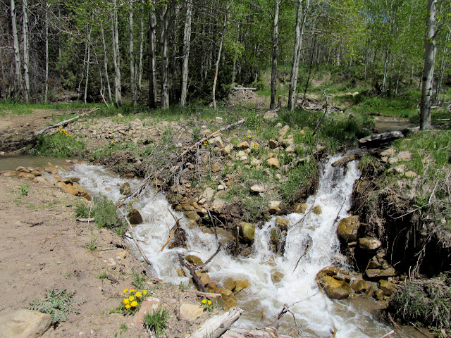 Streams in Bob Wright Canyon