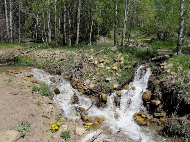 Streams in Bob Wright Canyon