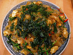 Photo: pad kee mao with mung bean sheet noodles