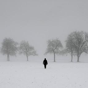 Winter by Jani Novak - Uncategorized All Uncategorized ( winter, trees and person, fog, snow )