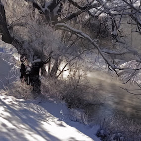 Stream Steam 02 by Kevin Lucas - Digital Art Places ( stream, winter, cold, fog, snow, trees, kevin lucas, eye statements, steam,  )