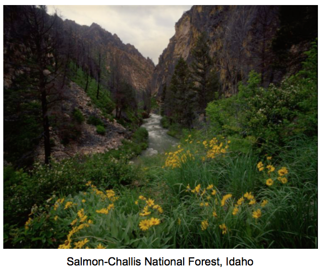 Karen Klopp and Hilary Dick article for New York Social Diary,What to wear National Forest Foundation Salmon-Challis National Forest Idaho