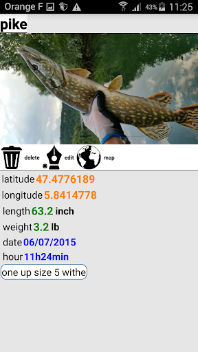 Fishing Fish Counter