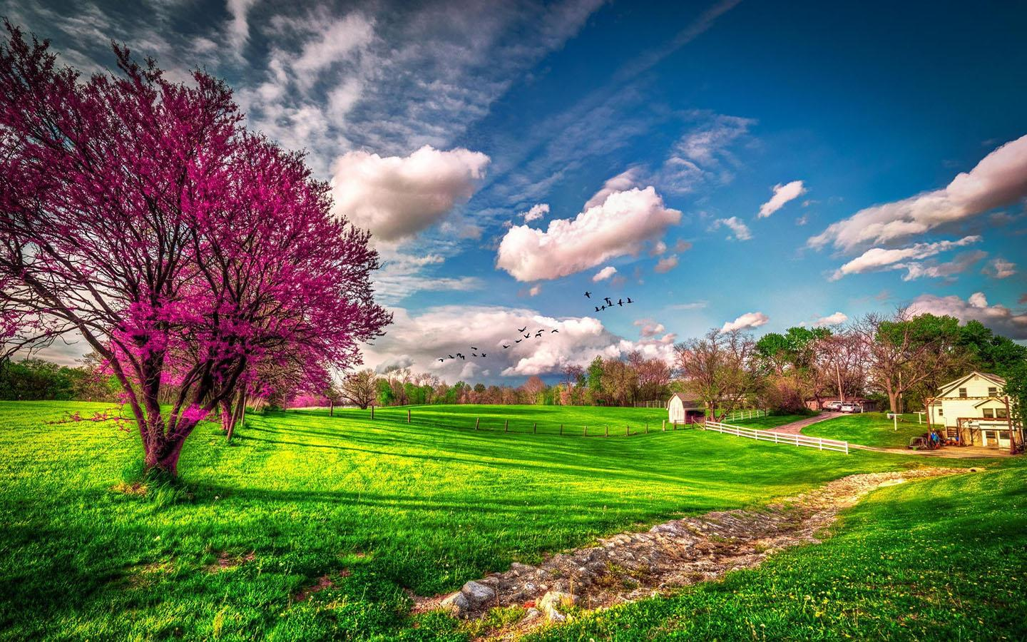 Spring Wallpaper HD Android Apps on Google Play