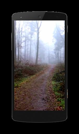 怖い森ビデオLWP