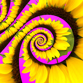 Psychedelic by Shaun White - Abstract Patterns ( purple, yellow, color,  )
