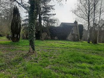 propriété à Loubejac (24)