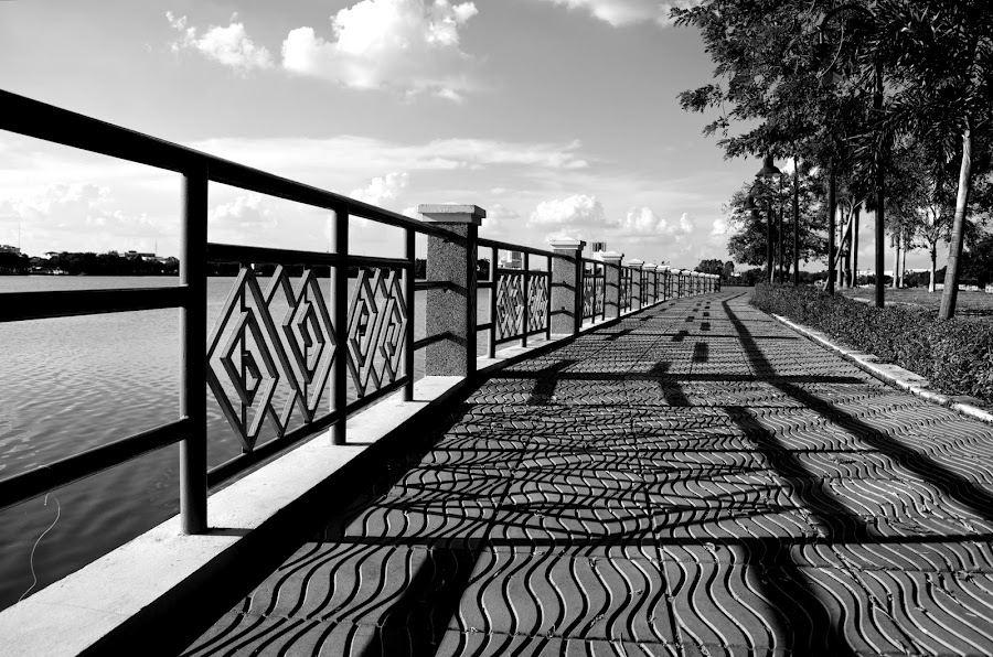 Around the Lake by Mark Pope - City,  Street & Park  City Parks ( walking, black and white, trail, thailand, lake )