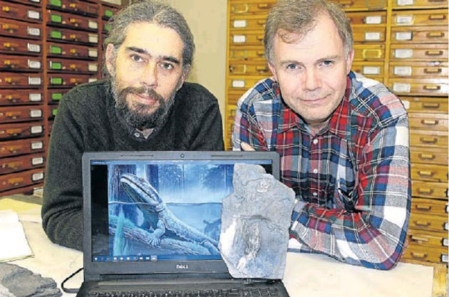 Dr Rob Gess, left, and Prof Per Ahlberg with the cleithrum (a bone from the shoulder girdle) of Tutusius and an image of a Devonian tetrapod.