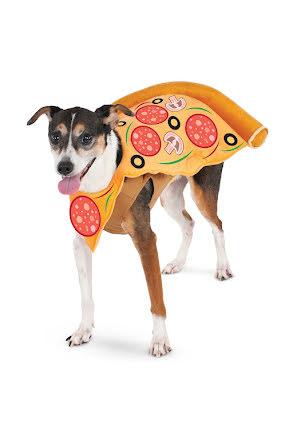 Hunddräkt, Pizza S