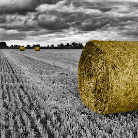 The Harvest by Jan Murphy - Digital Art Places ( clouds, sky, selective colour, hay bales, norfolk, moody, country )