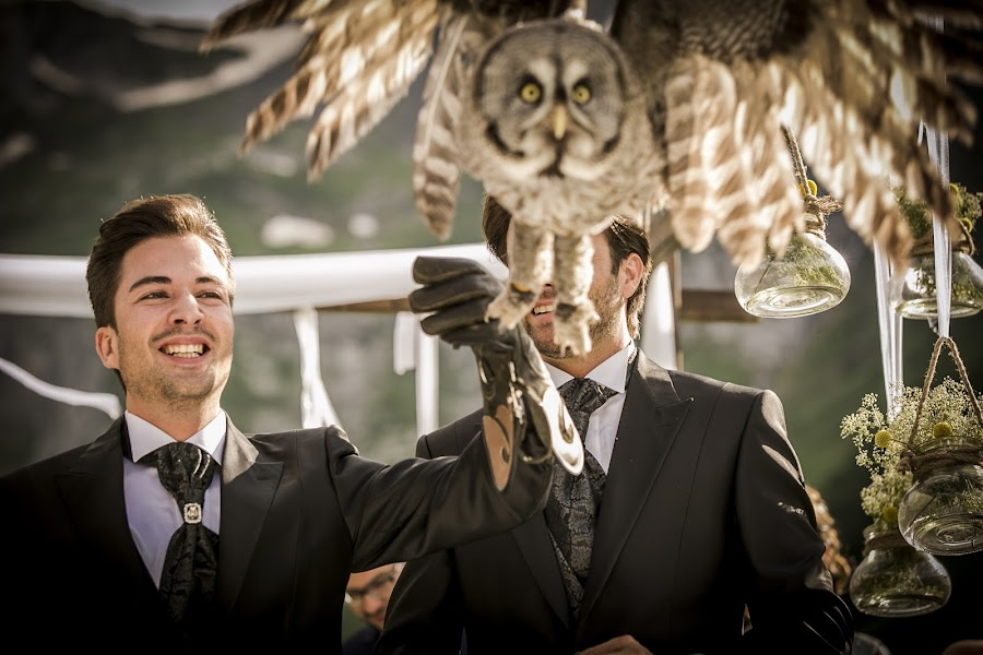 Wedding photographer Andreu Doz (andreudozphotog). Photo of 23.01.2015
