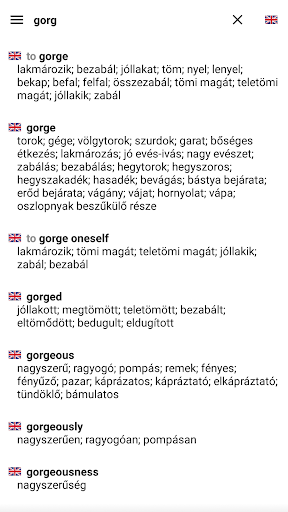 English Hungarian Dictionary  screenshot 1