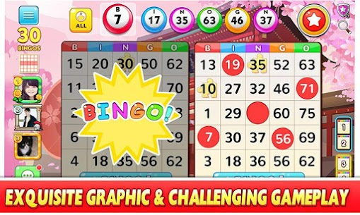 Bingo Win App Download For Android and iPhone 7