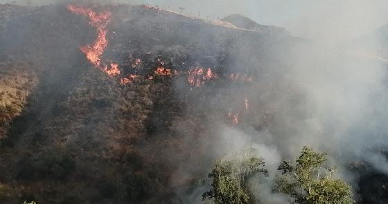 Declarado un incendio en Líjar