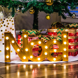 Noel time by Justin Hyder - Public Holidays Christmas ( gift, seasonal, year, bright, winter, box, bow, holiday, merry, gold, red, beautiful, bulbs, ornament, decor, design, golden, december, season, noel, tradition, decoration, lights, gifts, xmas, boxes, new, surprise, package, celebrate, festive, ribbon, tree, christmas, decorative, celebration, background, wooden, present, party )