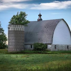 RURAL MINNESOTA by Dana Johnson - Buildings & Architecture Other Exteriors ( barn, farm, silo, building, architecture, morning, farmsite )