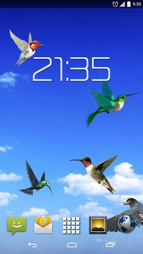 Sky Birds Live Wallpaper