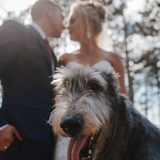Wedding photographer Sofya Denisyuk (ChiliStudio). Photo of 02.10.2018
