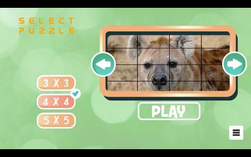 Wild animals jigzaw puzzle