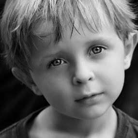 Innocence  by Katie McKinney - Babies & Children Child Portraits ( child, face, black and white, fine art, innocence, people, hair, boy, portrait, emotion, eyes,  )