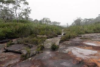 Photo: Iluka Creek